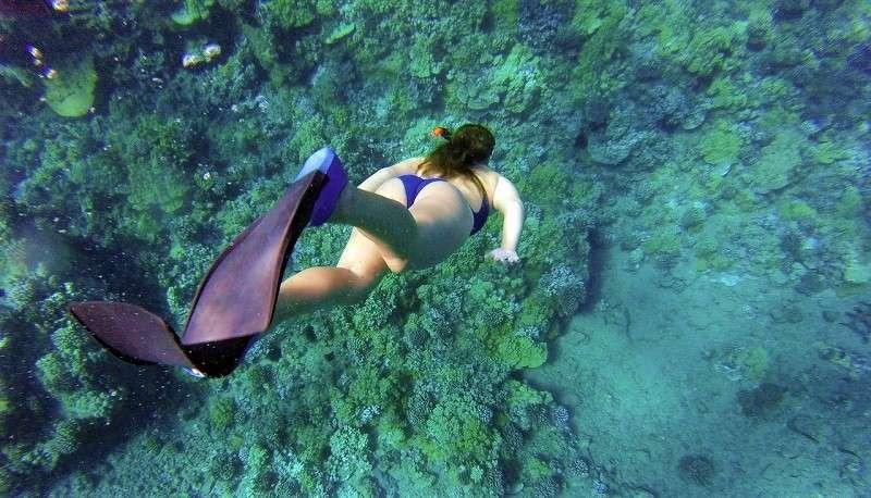 buceo snorkel tenerife